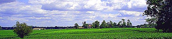 Chateau Lagraula et son vignoble